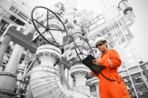 Industrial Cyber Security Inspection